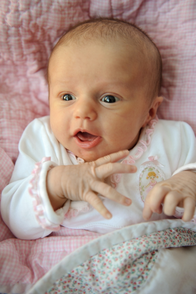 004-charlotte_newborn