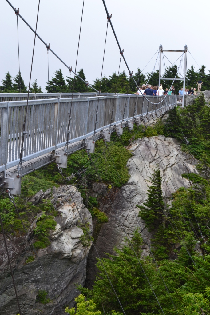 Scary hanging bridge that we all walked over.