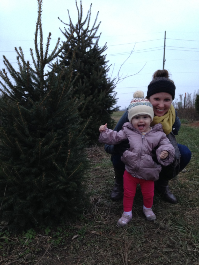 A Charlotte-sized Christmas tree.