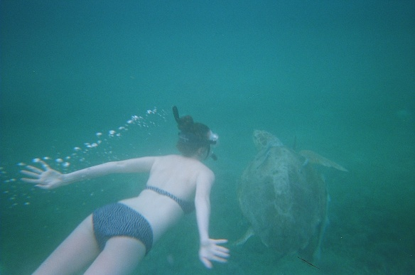 Along with a 60-something-year-old sea turtle.