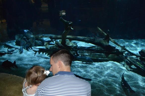 Fun at the Aquarium.